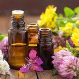 ¿Cómo se elaboran los cosméticos biológicos?